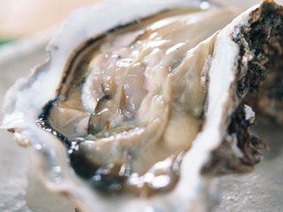 初夏の貝【岩牡蠣】